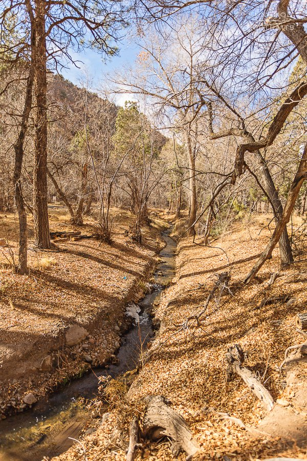 bandelier creek in the park