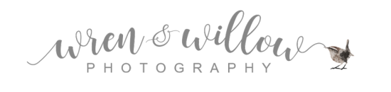 Wren & Willow Photography - Broomfield, CO Lifestyle Newborn, Maternity & Family Photographer